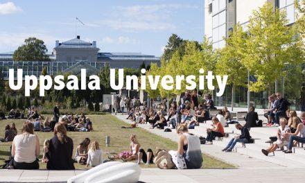 【北欧最古の大学】スウェーデン・ウプサラ大学留学記 – Arrival Day –