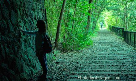【兵庫県版ウクライナ愛のトンネル】武庫川渓谷にて愛を確かめなはれ!