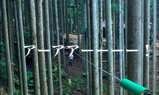 【日本最大級の大人アスレチックは兵庫にあった!】フォレストアドベンチャー朝来でジャングルの王たーちゃんしよう!