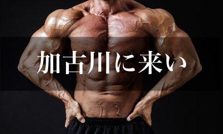 【兵庫県一のジムはどこ!?】元相撲力士の娘が教える加古川の格安、綺麗、利用者の少ないジム