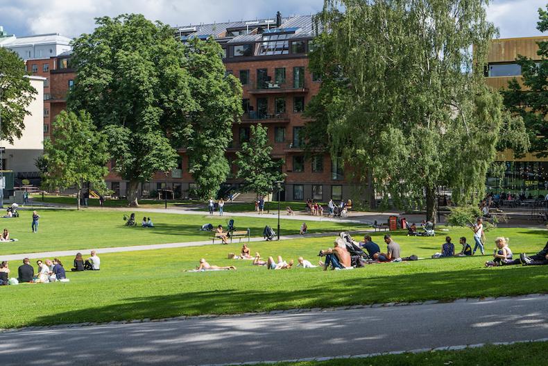 【日光浴の達人】スウェーデン人がどこででも寝るのはなぜ?