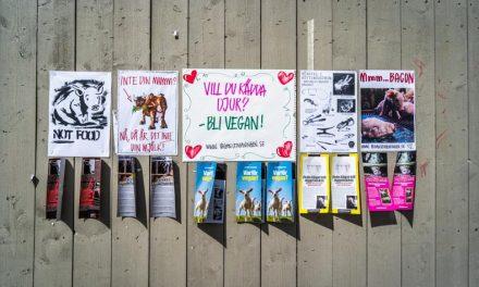 【思い出を運べ】ストリートポスターで部屋をスウェーデン気分に
